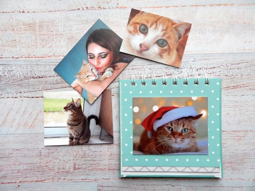Mini álbum para Gato
